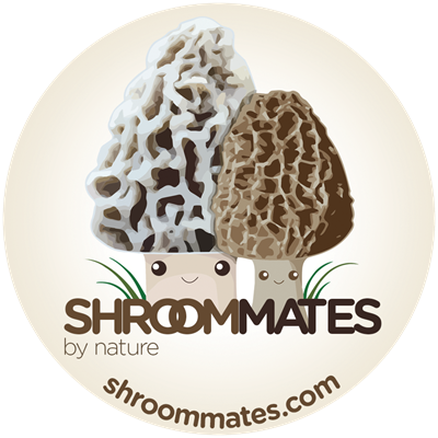 Picture of ShroomMates.com Gift Cards