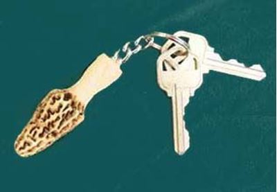 Picture of Morel Key Ring